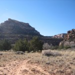 Trudging into lower Mule Canyon on red powder sand