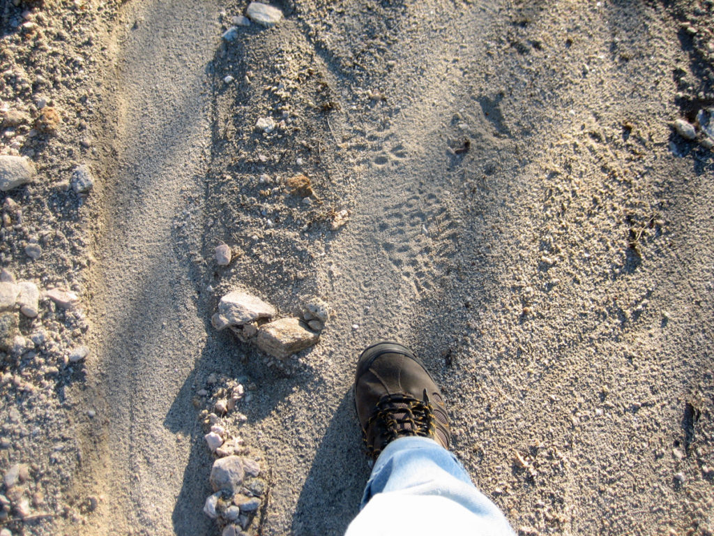 I tested myself by following my own tracks back to camp
